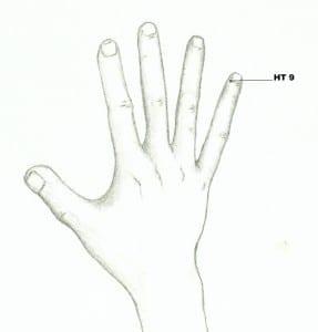 Figure 14- Heart 9