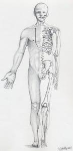 Figure 19- Kidney Meridian